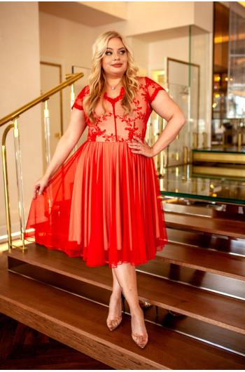 Q-12 Sukienka na wesele Plus Size z koła z tiulem czerwona